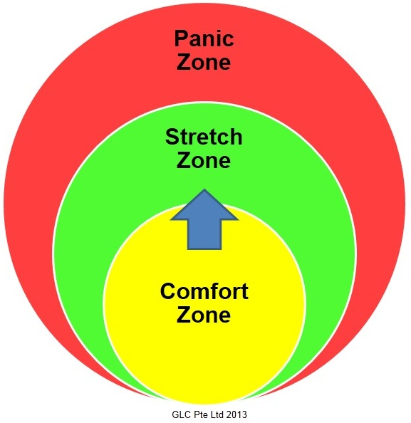 Image result for comfort zone growth zone panic zone